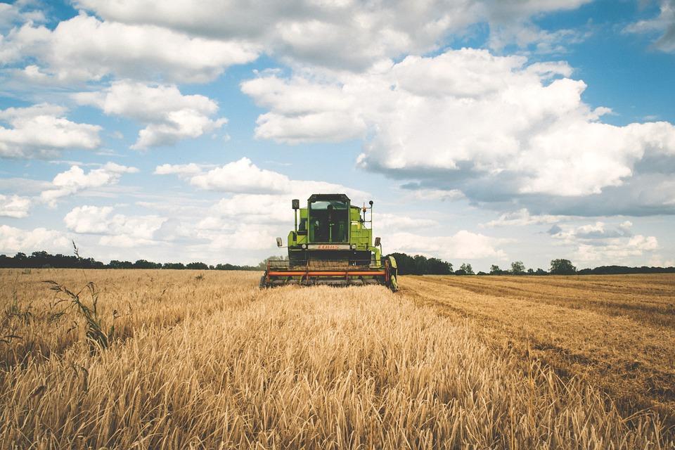 Sanctions des produits agricoles français : ça suffit !