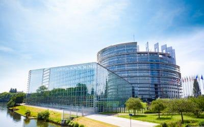 Délégation du Rassemblement National au Parlement européen: une année au service de la France et des Français