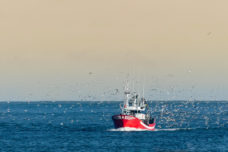 L'UE entérine le flicage des pêcheurs