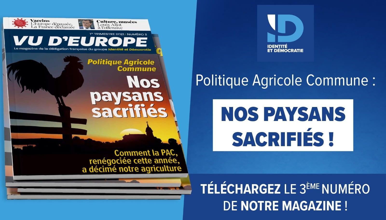 Vu d'Europe n°3